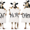 Thumbnail image for FREE Chick-Fil-A Breakfast (9/9 – 9/14)