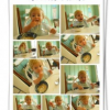Thumbnail image for Walgreens Photo: 8 x 10 Collage Print for Only $0.99!