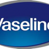 Thumbnail image for Walmart- Free Vaseline Lotion