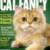 Thumbnail image for Cat Fancy Magazine – $5.29 For One Year