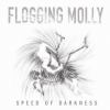 """Thumbnail image for Amazon Free Music Download: Flogging Molly """"Don't Shut 'Em Down"""""""