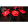 Thumbnail image for Amazon: Light Up Roses $2.03 Shipped