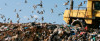 Thumbnail image for Recyclebank- Earn 30 pts By Taking A Quiz on Landfills