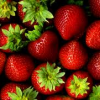 Thumbnail image for Whole Foods 7/19 – Organic Strawberries $1.99 lb