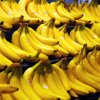 Thumbnail image for Checkout51: New Offers Release Today (Earn $0.50 Cash with Bananas Purchase)