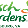 Thumbnail image for Busch Gardens® Williamsburg: Buy An Adult Ticket, Get A Child's Ticket Free