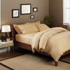 Thumbnail image for Pinzon Signature 190-Gram Velvet Flannel Duvet Set $20.62