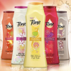 Thumbnail image for Free Sample of Tone Body Wash