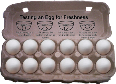 fresh-egg-carton