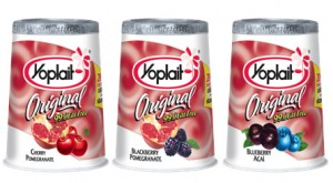 Post image for Harris Teeter: Yoplait Yogurt $.23 Each