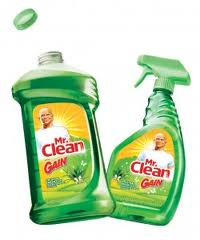 mr clean gain