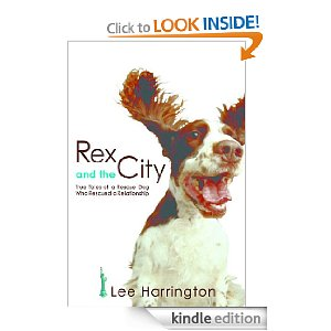 Post image for Amazon Free Book Download: Rex and the City