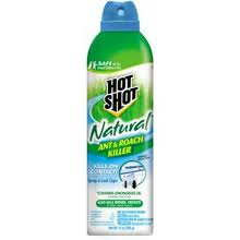 Post image for $1.00 off Any ONE Hot Shot Insecticide Product Printable Coupon