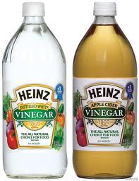 Post image for Target: Free Heinz Vinegar With Coupon