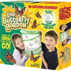 Post image for Amazon: Insect Lore Live Butterfly Garden $12.11