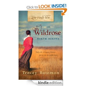 Post image for Amazon Free Book Download: Love Finds You in Wildrose, ND