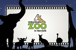 Post image for Discount on Virginia Zoo Tickets