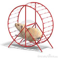 Post image for My Website Got a New Hamster Wheel Today