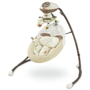Post image for Amazon: Fisher-Price Cradle 'N Swing $99.99 Shipped