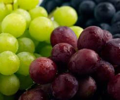 Post image for Whole Foods One Day Sale: Organic Grapes Only .99/lb on June 28th!