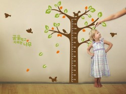 Post image for Amazon-WallStickersUSA Wall Sticker Decal Tree Growth Chart  $5.70