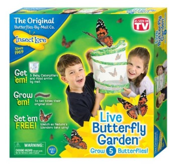 Post image for Insect Lore Live Butterfly Garden-$10.95