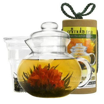 Post image for Primula 40-Ounce Daisy Tea Pot Gift Set-$25