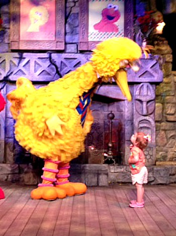 big bird little girl edited