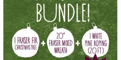 whole foods holiday tree bundle