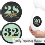pregnancy stickers
