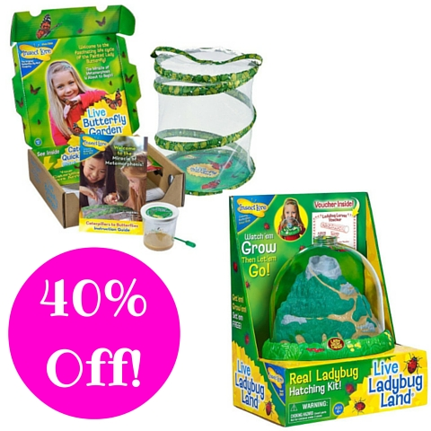Amazon: Insect Lore Live Butterfly or Ladybug Gardens 40% Off