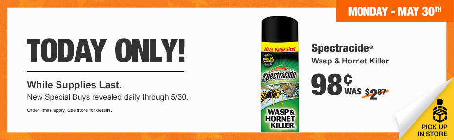 wasp and hornet killer