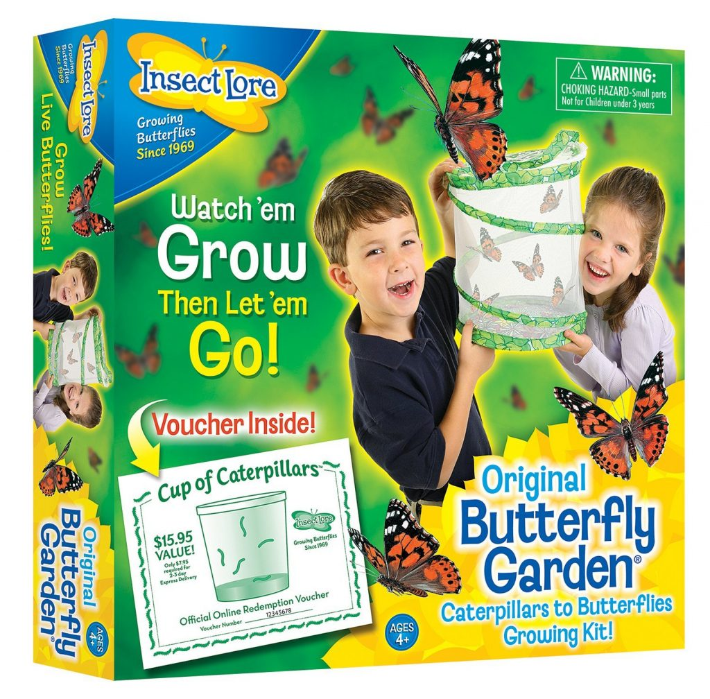 insect lore butterly garden