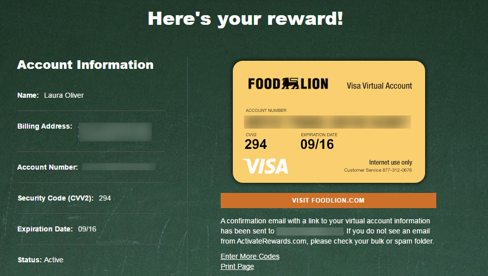 How To Use Your Food Lion School Of Champions Visa Credits