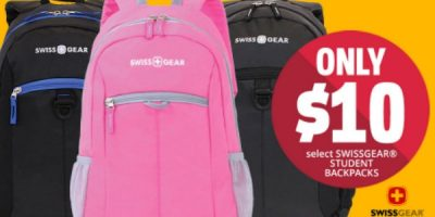 swiss gear back pack