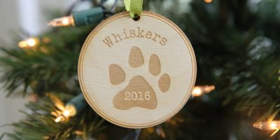 pet-ornament-whiskers