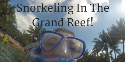 Discovery Cove Resort- Snorkeling In The Grand Ree...