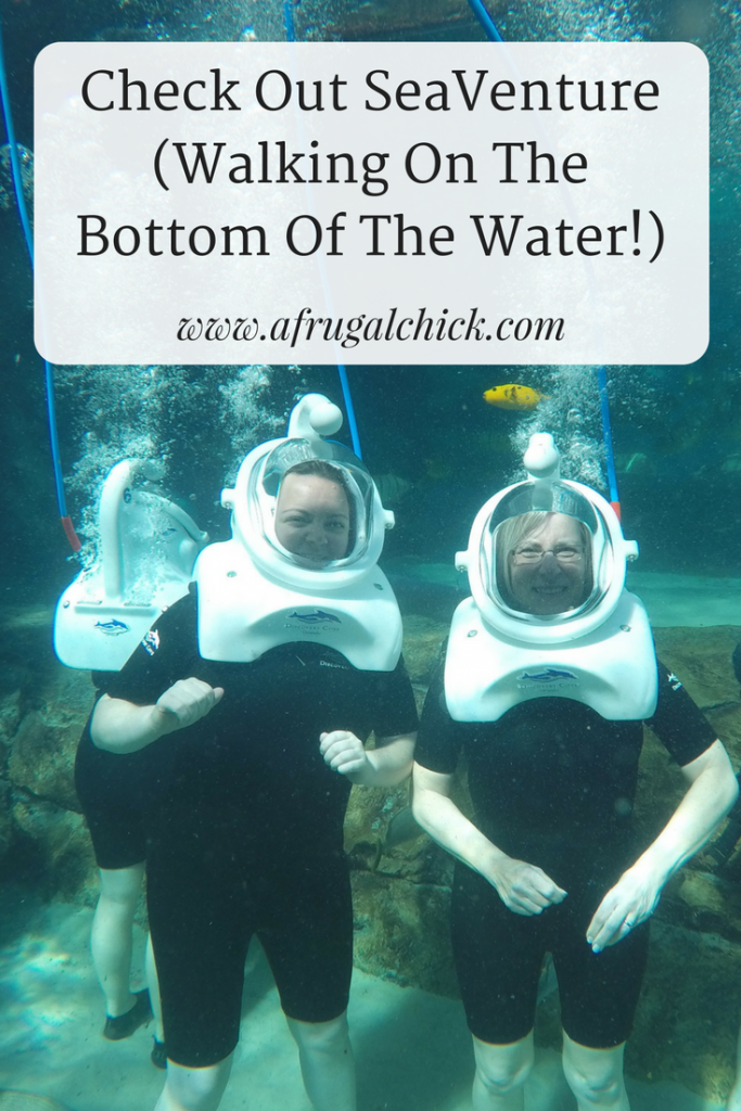 scovery Cove Reviews- Check out this incredible experience at Discovery Cove Orlando where you walk on the bottom of the reef!