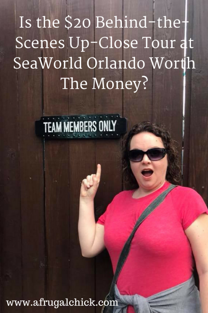 Behind-the-Scenes Up-Close Tour at SeaWorld Orlando Review- Is The Tour Worth the $20? I believe it is and here is what happened when we went on it ourselves!