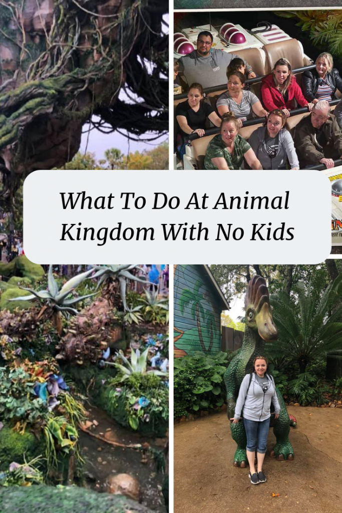 What To Do At Animal Kingdom With No Kids- Heading to the park and want to make the best of it? Check out my one day plan for Animal Kingdom With No Kids!