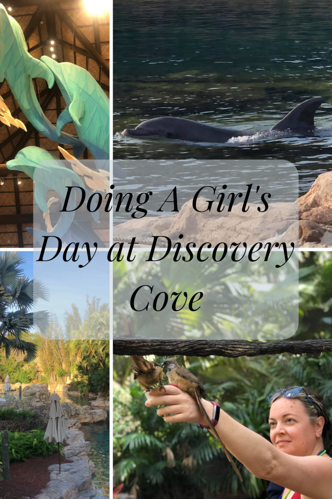 Girl's Day at Discovery Cove- If you are looking for a girl's day to relax I highly recommend Discovery Cove! It was a fantastic day!