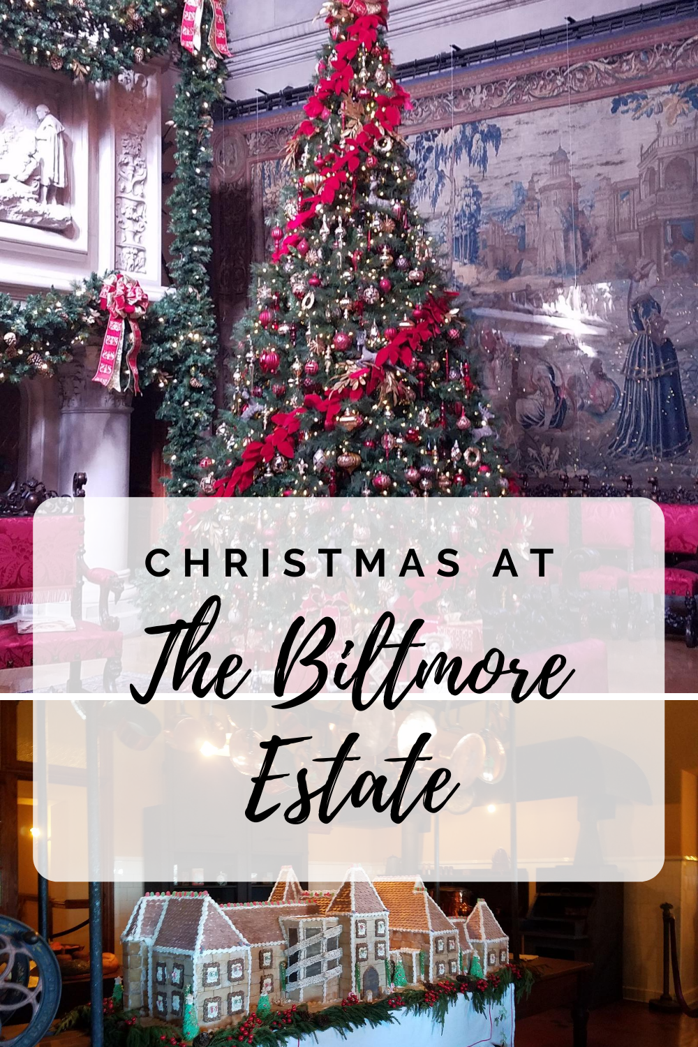 Celebrating a Biltmore Christmas- with hundreds of trees, twinkling lights, live music and amazing food who wouldn't want to celebrate a Biltmore Christmas?